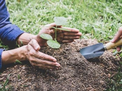 5. јун – Светски дан заштите животне средине